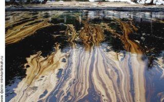 Экологические проблемы переработки нефти и нефтедобычи