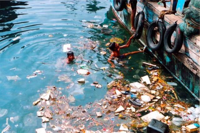 Загрязнение среды нефтепродуктами: загрязнение морей, океана