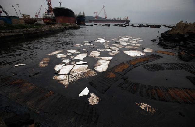 Абсорбент для сбора нефти и нефтепродуктов: основные виды